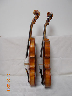maggini violins to purchase Flocello store Hamilton